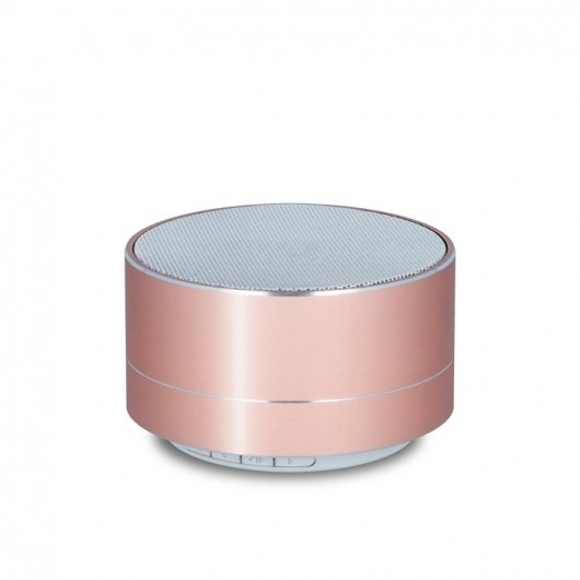 Bluetooth speaker PBS-100